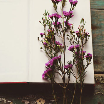 Flower and book photograph- wax flowers, purple, romantic, still life, fine art photo, 8x10 print, botanical, rustic, floral, white