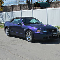 Ford : Mustang SVT Cobra Convertible 2-Door