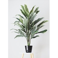"Artificial Potted Cordyline Palm Floor House Plant - 40"" Tall"