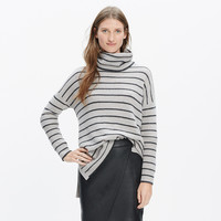 Ribbed Turtleneck Sweater in Stripe