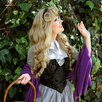 Sleeping Beauty Aurora Adult Costume Wig A True Enchantment Original