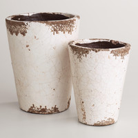 Ivory Planters - World Market