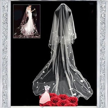 WL 2.5M Cathedral Long Romantic Bridal Mantilla Sky and Star Applique Wedding veil (Color: White) = 1932088708
