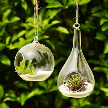 Air Plant Planter Holder // Teardrop Plant Terrarium // 4 Inch Hanging Orb Terrarium // Indoor Planter Gardening // Glass Candle Holders
