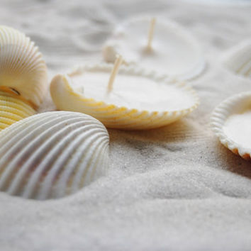 Eco-friendly Candles Scented Hand Made Seashells Candles - Set Of 24 pcs