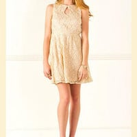 Claire Sparkly Lace Dress