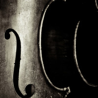 A Cello Piece Fine Art Photography Cello Music Notes Instruments Musical Photo Print Classical Wall Decor Music Lover Gift Black and White