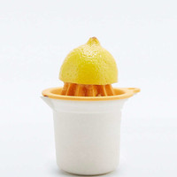 Juicer Pot - Urban Outfitters