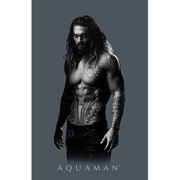 DC Comics Apparel Aquaman Shirt DC Comics Tee Aquaman TShirt Aquaman Gift
