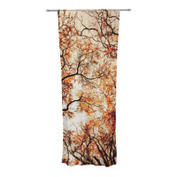 "Bree Madden ""Fire Trees"" Decorative Sheer Curtains"