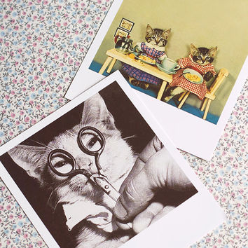 Polaroid Photographs-set of 2.Vintage cats Polaroid Print,Vintage Photography decor.Cat lovers home decor. Cats Wall decor. Vintage kittens.