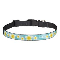 Tropical White Plumeria Flowers With Dog's Name Pet Collar