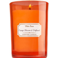 Orange Blossom & Driftwood Medium Candle | Bath And Body Works