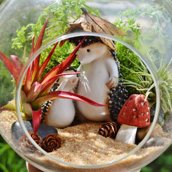 "Hedgehog Terrarium Kit ~ Mom and Baby Hedgehogs ~ 7"" Glass Globe ~ 2  Air Plants ~ Mushroom ~ Lichen Moss ~ Gift Idea ~ Mother's Day Gift"