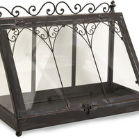 Lefroy Tabletop Terrarium - Free Shipping!