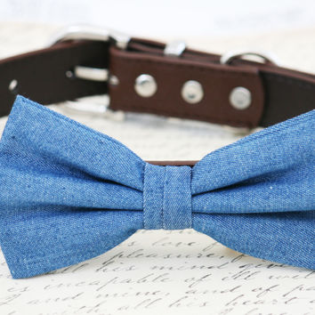 Blue and brown dog bow tie - Denim bow tie, Blue Brown Wedding accessory, some thing blue, Blue dog bow tie, Denim dog bow, Dog birthday