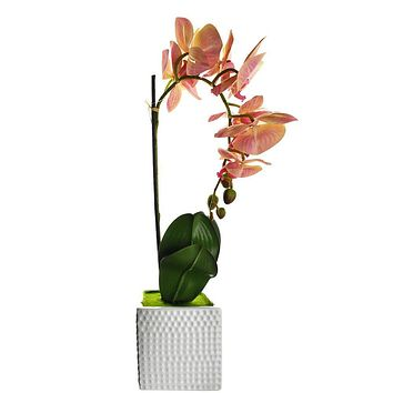 Artificial Moth Orchid with Square Pot, Pink, 20-Inch