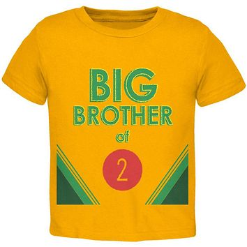 Crayon Big Brother of 2 Toddler T Shirt