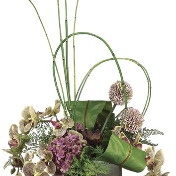 Variegated Phalaenopsis Orchids With Birds Nest Fern In A Bamboo Cube Container