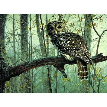 Frameless Picture DIY Painting By Numbers Owl Animals Acrylic Picture Kits Drawing Paint On Canvas For Home Wall Art Picture