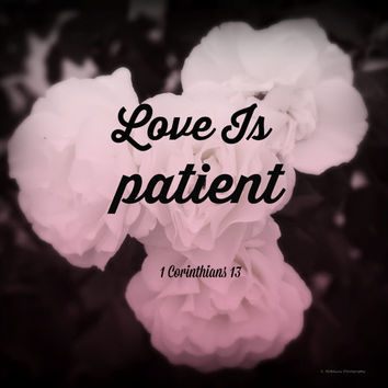 Bible Verse, Love is Patient, Digital Art Print, Home Decor, Ready to Frame Photo, Wall Hanging, Floral Photograph, Roses, Wedding Gift