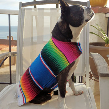 Handmade dog poncho - Wear as costume or for warmth