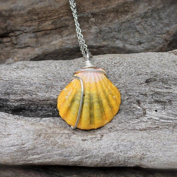 Sunrise Shell Necklace made in Hawaii - Hawaiian Sunrise Seashell Jewelry - Hawaii Sunrise Shell Jewelry - Hawaiian Seashell Necklace