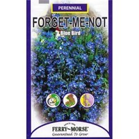 Ferry-Morse, 250 mg Blue Bird Forget-Me-Not Seed, 1050 at The Home Depot - Mobile