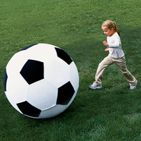 The Giant 40 Inch Soccer Ball