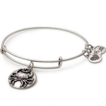 Search results for: 'Cancer charm bangle'