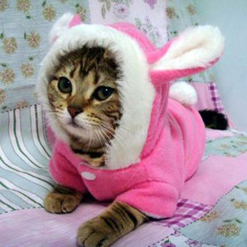 Winter Cat Clothes Costume Clothes For Cats Hoodies Cute Rabbit Cat Coat Puppy Outfit Fleece Warm Pet Clothing for Cats 30F1