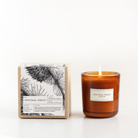 Montana Forest Amber Glass Candle