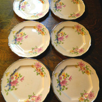 Set of 6 Small Sized Pink Floral China Plates with Platinum Trim Made by Taylor Smith & Taylor