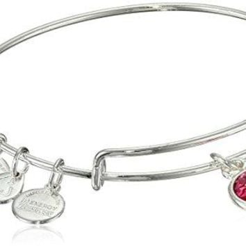 Alex and Ani Bangle Bar Imitation Birthstone Bangle Bracelet 275quot