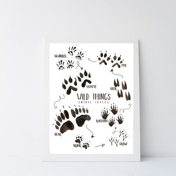 Wilderness nursery decor, wild life animal tracks printable art, 8x10
