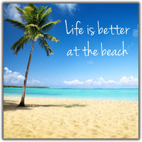 "Caribbean Tropical Beach Magnet 2.25"" x 2.25"" - Life is Better at the Beach Palm Tree"