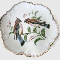Decorative Porcelain Bird Plate With Gold Gilt Trim Hand Painted