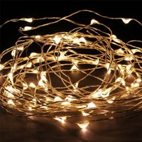 NexScene Starry Durable DC Silver Coating 10M/33FT Copper Wire Flexible Lights 100 LEDs For Wedding Christmas Party Holiday with 12V Power Adapter (Warm White)