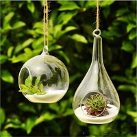 2017 Hot New Clear Glass Round With 1 Hole Flower Plant Hanging Vase Container Home Office Wedding Decor Terrarium