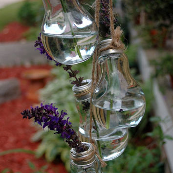 5 Glass Light Bulb Collection of Flower Vase Stem holders for outdoor decor home decor bedroom decor kitchen decor