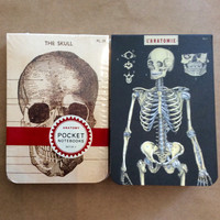 Anatomy Pocket Notebooks