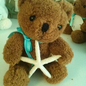 Beach Treasures - Brown Bear treasures his starfish.