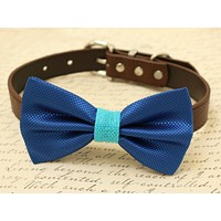 Royal blue Bow Tie attached to dog collar, pet wedding accessory, Burlap, Beach wedding