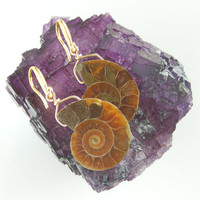 Petite Ammonite Earrings - Natural Fossil Jewelry - Science Geek Gifts for Rockhounds