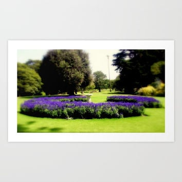 Botanical Garden Art Print by Chris' Landscape Images & Designs