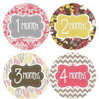 Monthly Onesuit Stickers Baby Girl Month Stickers Girl Pink Yellow Brown Floral Month Onesuit Stickers Baby Shower Gift Photo Prop Corine-R