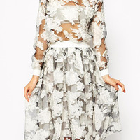 Long Sleeve Sheer Floral Blouse and Skirt