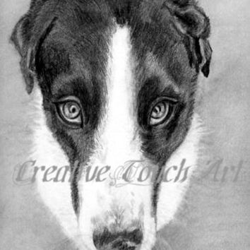 Pencil Drawing Of A Dog - Louie Has A look To Melt Your heart 16x20