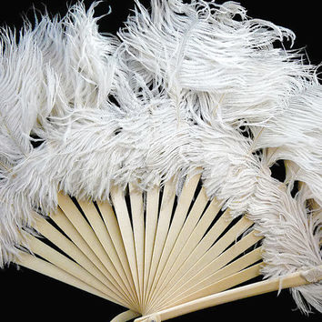 Vintage, Set of 2, White Feathered, Plastic, Celluloid, Hand Fans