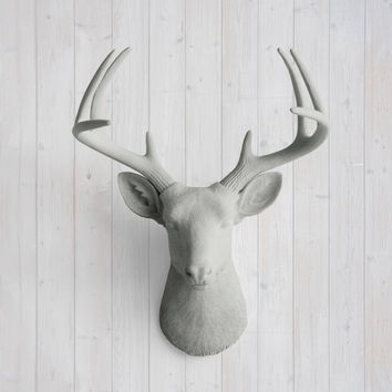 The Virginia Large Gray Faux Taxidermy Resin Deer Head Wall Mount | Gray Stag w/ Colored Antlers